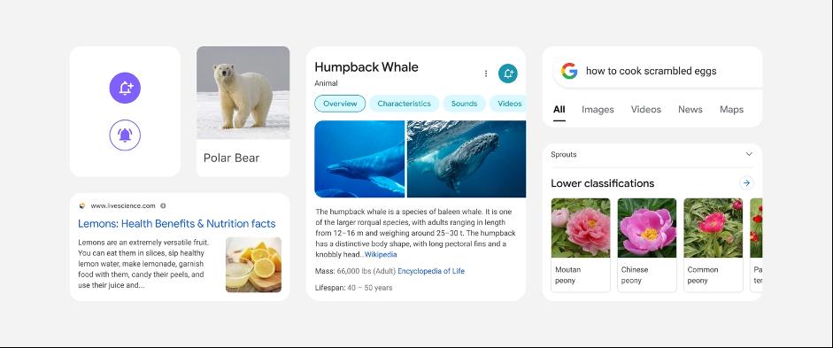 Nieuwe google zoekresultaten op mobiel